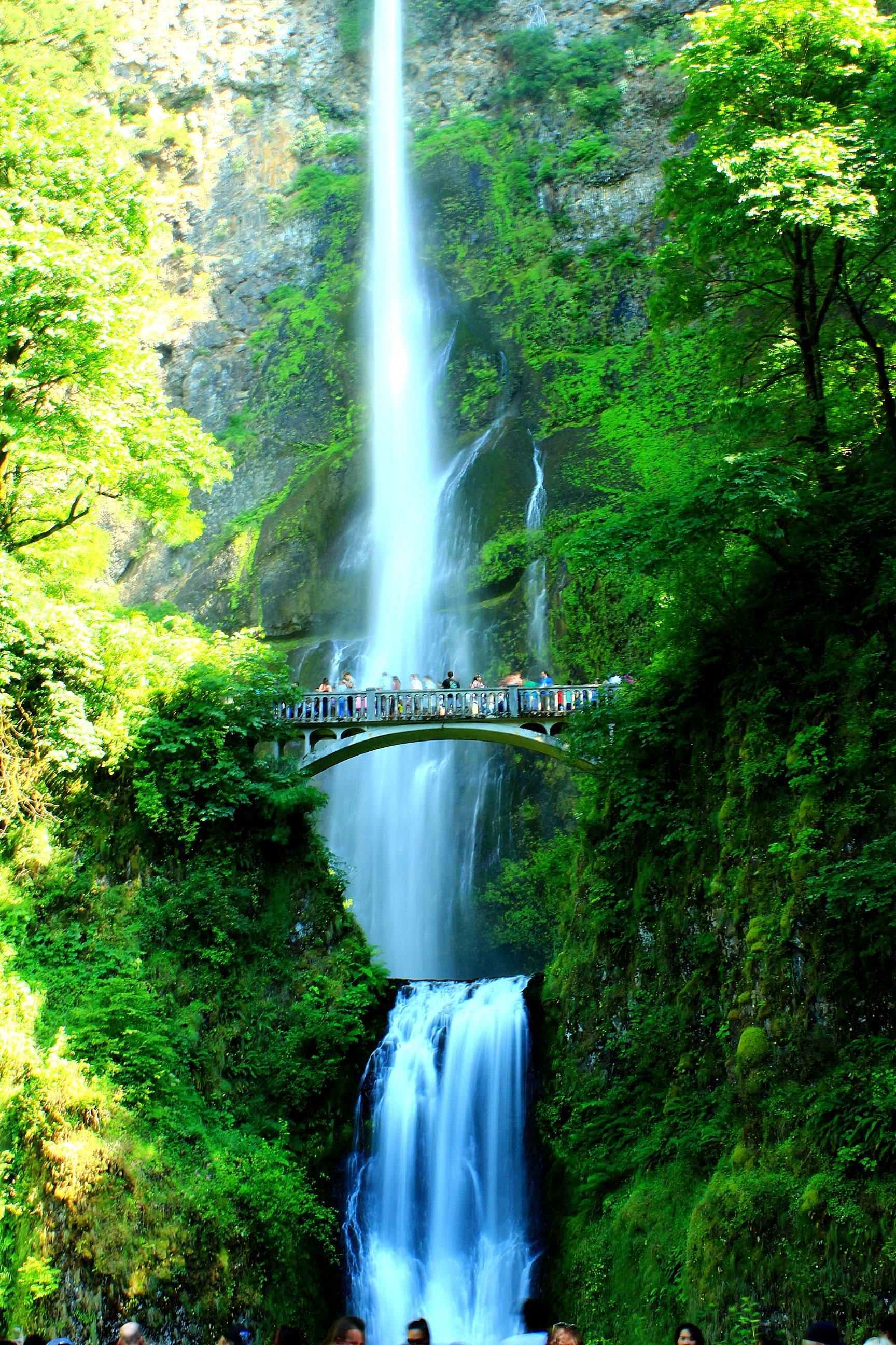 Multnomah Falls - 1